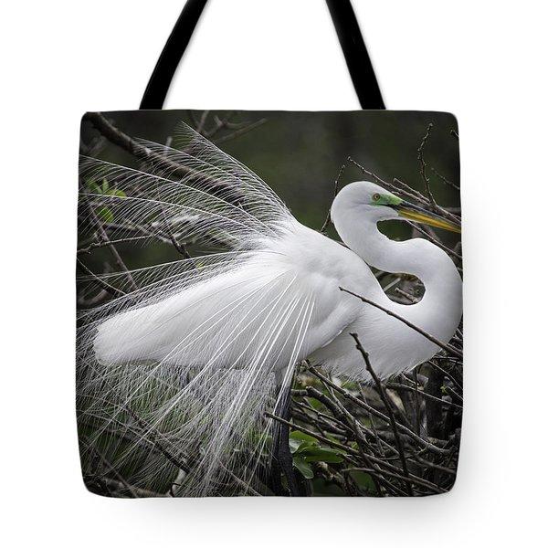 Great Egret Preening Tote Bag
