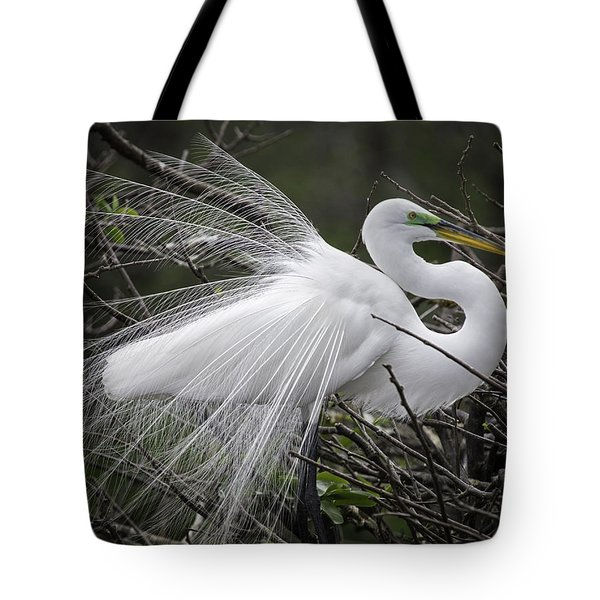 Great Egret Preening Tote Bag by Fran Gallogly