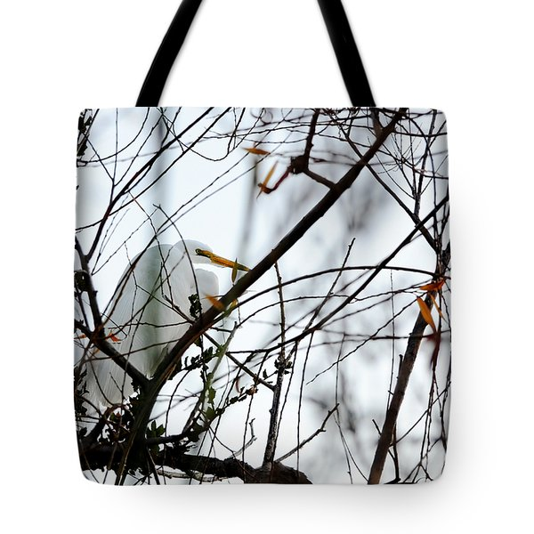 Tote Bag featuring the photograph Great Egret Roosting In Winter by Susan Wiedmann