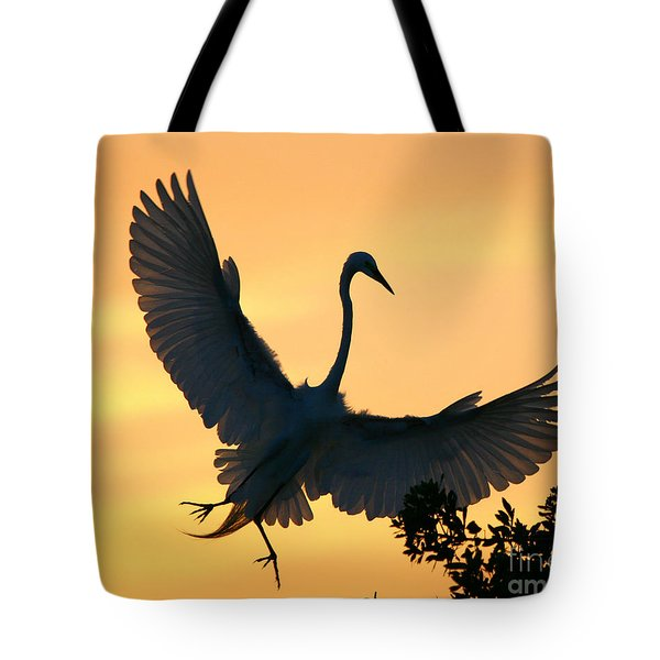 Tote Bag featuring the photograph  Sunset Ballet by John F Tsumas