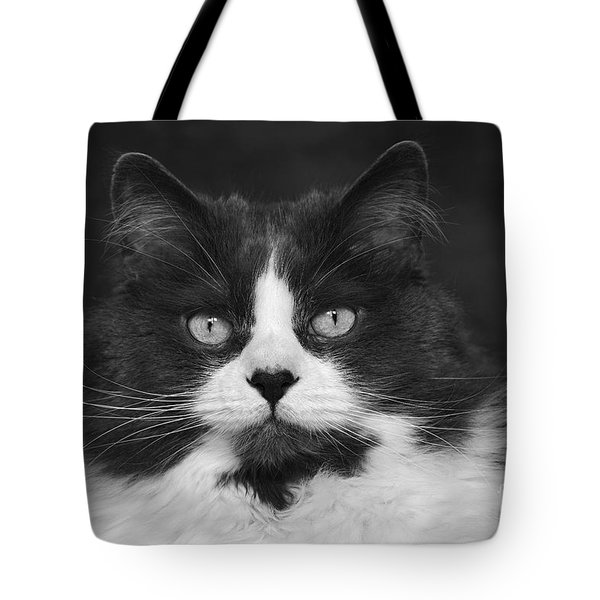 Great Gray Cat Tote Bag
