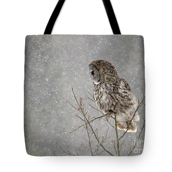 Great Grey Hunter Tote Bag