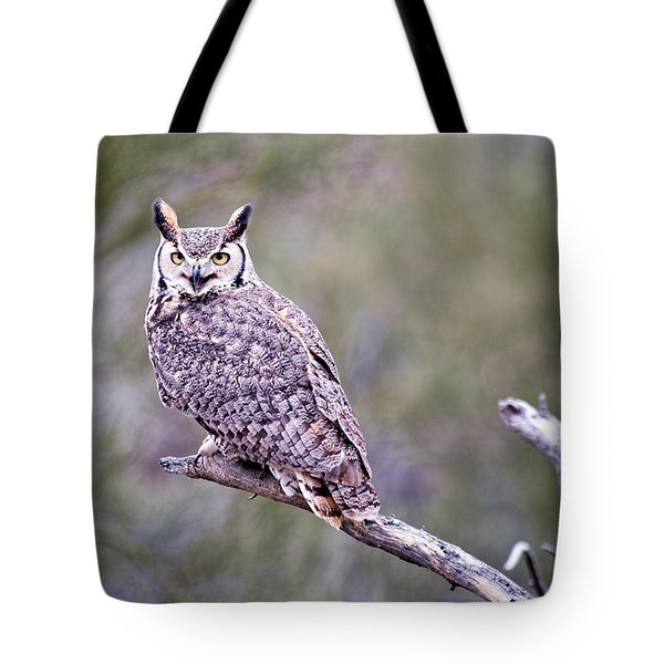Tote Bag featuring the photograph Great Horned Owl by Dan McManus