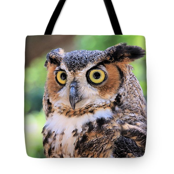 Tote Bag featuring the photograph Great Horned Owl by Rosalie Scanlon