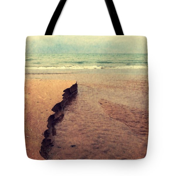 Great Lakes Great Times Tote Bag by Michelle Calkins