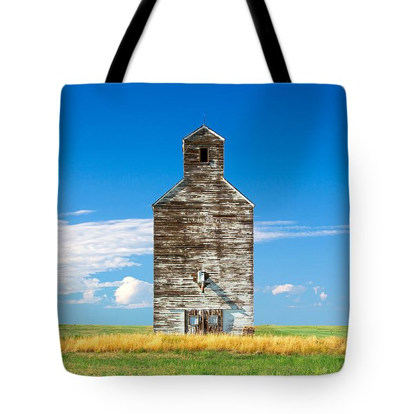 Tote Bag featuring the photograph Great Plains Sentinel by Todd Klassy