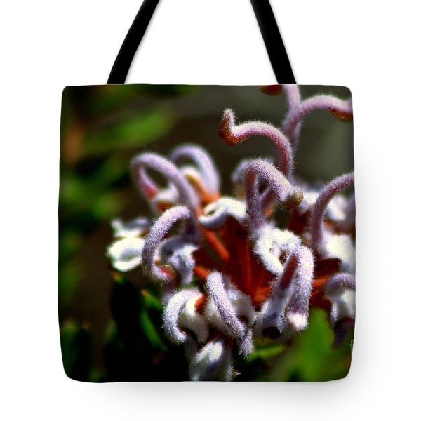 Tote Bag featuring the photograph Great Spider Flower by Miroslava Jurcik