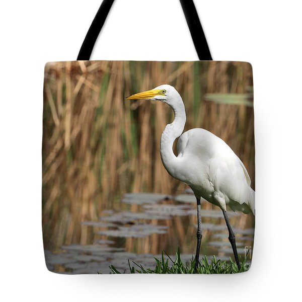 Great White Egret Taking A Stroll Tote Bag by Sabrina L Ryan