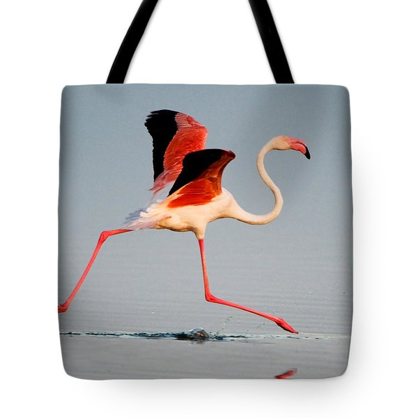 Greater Flamingo Phoenicopterus Roseus Tote Bag