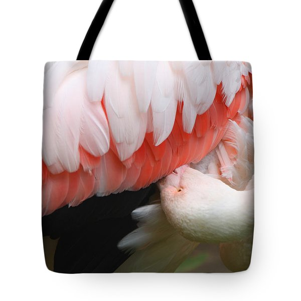 Greater Flamingo Preening Tote Bag