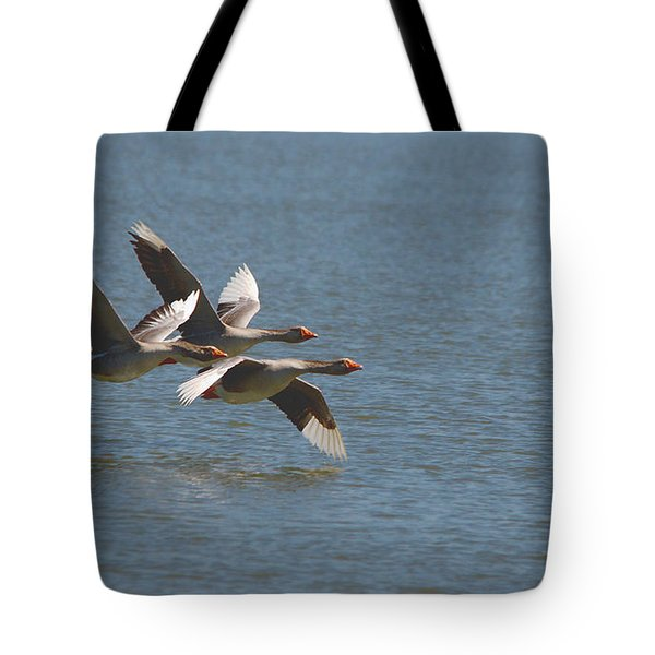 Greater White-fronted Geese In Flight Series 4 Tote Bag
