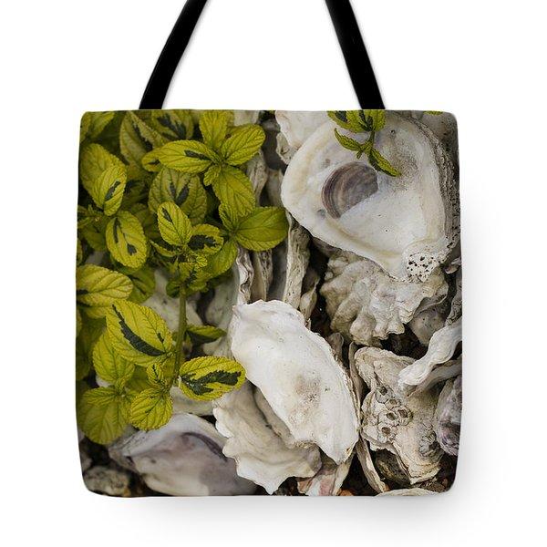 Green Abalone Tote Bag