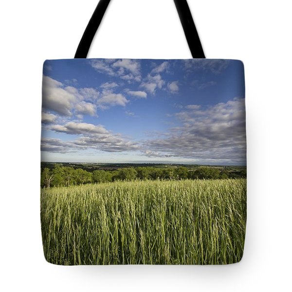 Green And Blue Tote Bag by Daniel Sheldon