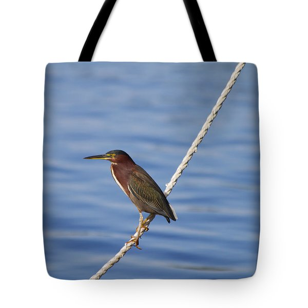 Green Back Heron Tote Bag
