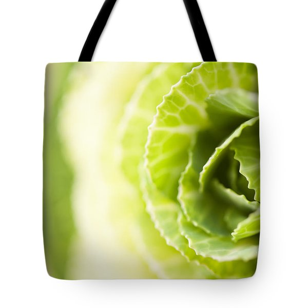 Green Cabbage Tote Bag by Anne Gilbert