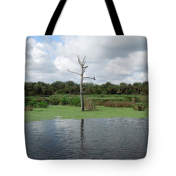 Tote Bag featuring the photograph Green Cay Panorama by Ron Davidson