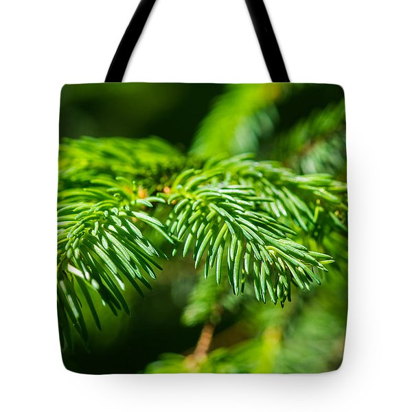 Green Christmas Tree 2 Tote Bag by Alexander Senin