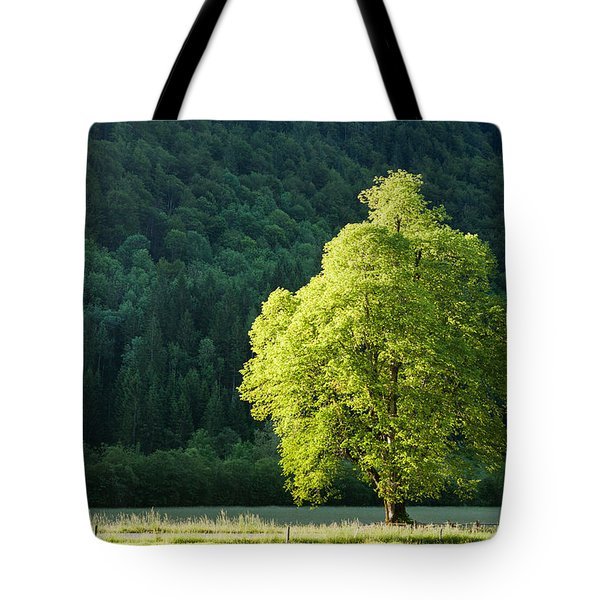 Green Contrast Tote Bag