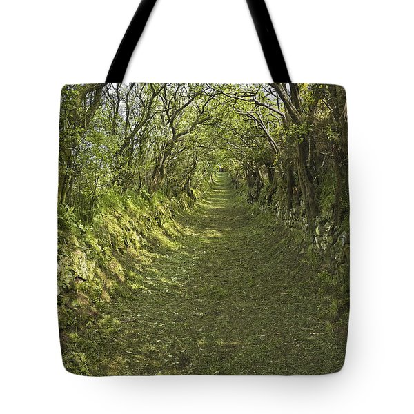 Tote Bag featuring the photograph Green Country Lane by Jane McIlroy