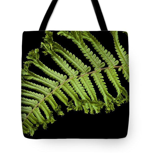 Green Curve Tote Bag by Trevor Chriss