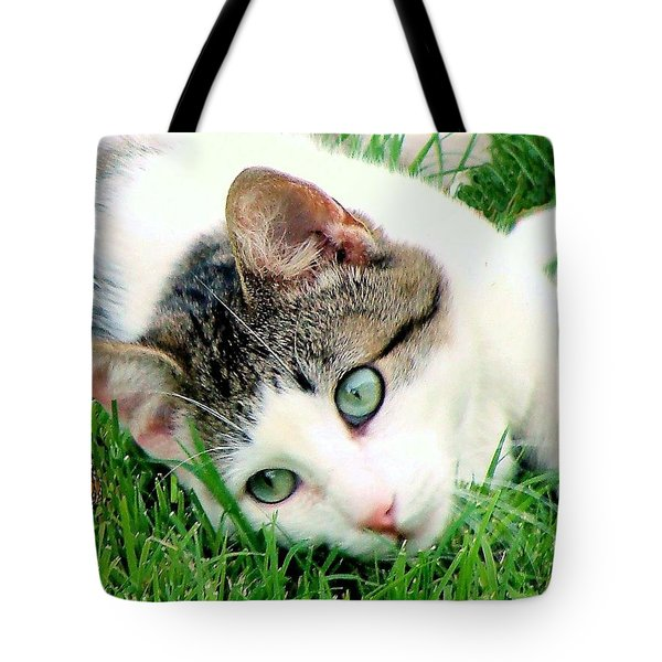Tote Bag featuring the photograph Green Eyed Cat by Janette Boyd