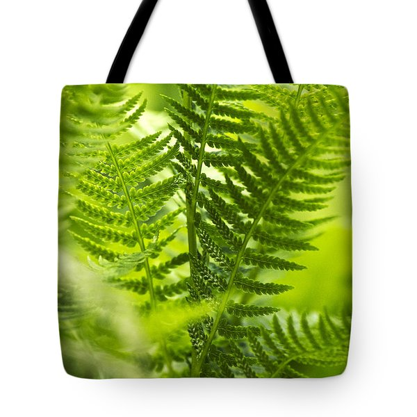 Green Fern Art Tote Bag by Christina Rollo