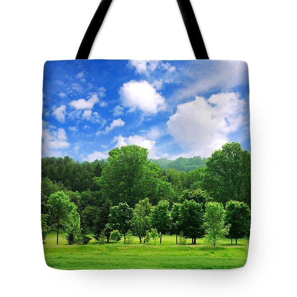 Green Forest Tote Bag by Elena Elisseeva