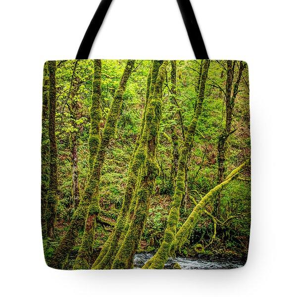 Green Green Tote Bag by Jon Burch Photography