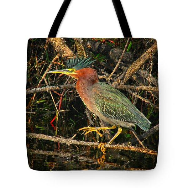 Green Heron Basking In Sunlight Tote Bag