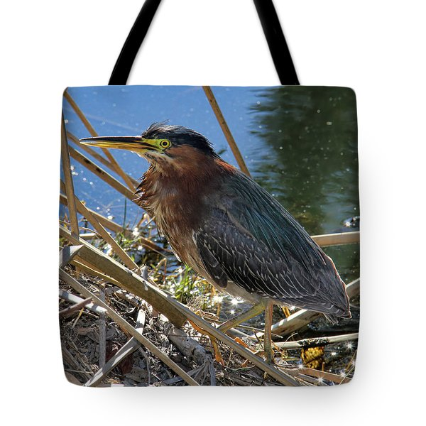 Green Heron  Tote Bag by Mariola Bitner