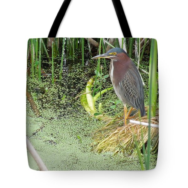 Tote Bag featuring the pyrography Green Heron by Ron Davidson