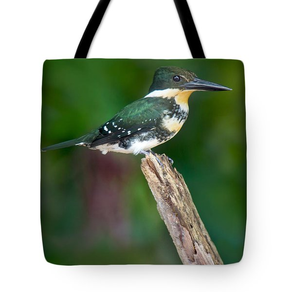 Green Kingfisher Chloroceryle Tote Bag by Panoramic Images