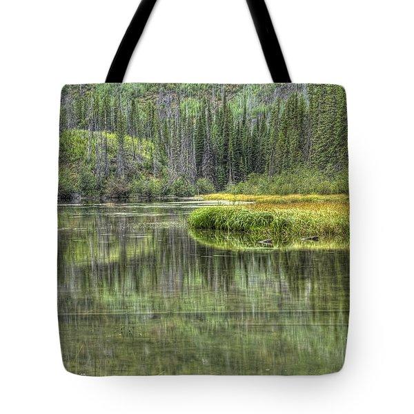 Green Lake Tote Bag by Wanda Krack