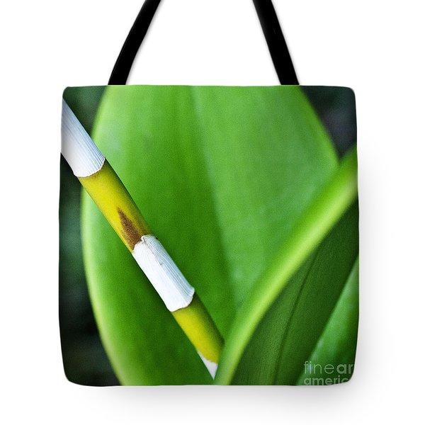 Green Leaves Tote Bag by Heiko Koehrer-Wagner