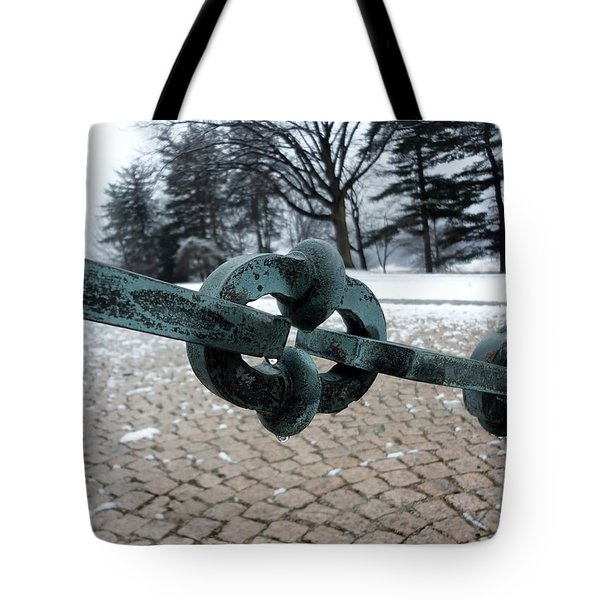 Green Patina Tote Bag by Michael Porchik