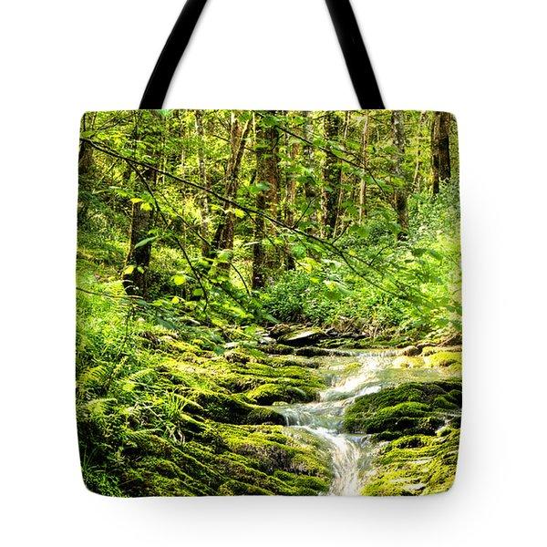 Green River No2 Tote Bag by Weston Westmoreland