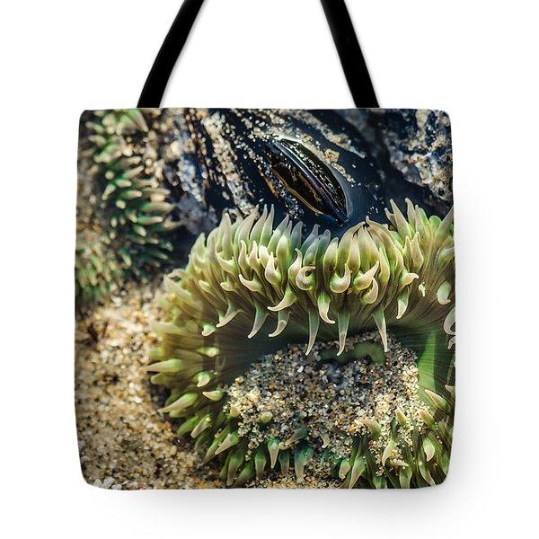 Green Sea Anemone Tote Bag