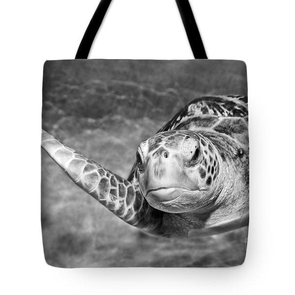 Green Sea Turtle. Tote Bag by Jamie Pham