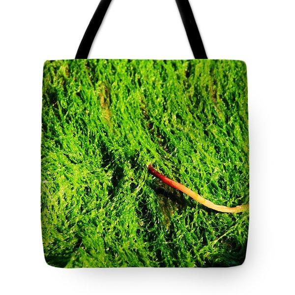 Green - Seaside Abstract Tote Bag by Aidan Moran