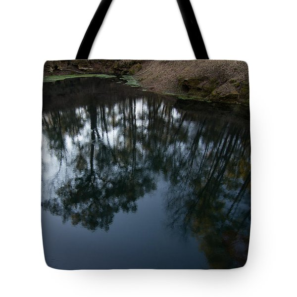 Tote Bag featuring the photograph Green Sink Reflection by Paul Rebmann