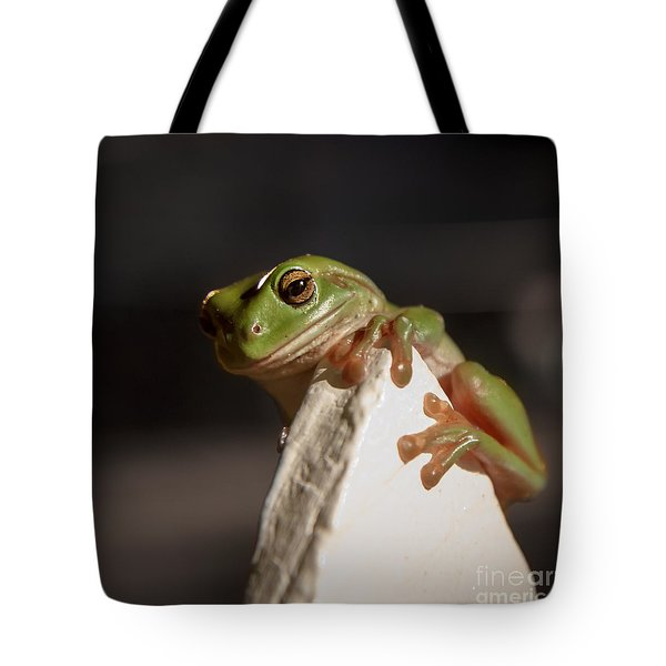 Green Tree Frog Keeping An Eye On You Tote Bag by Peta Thames
