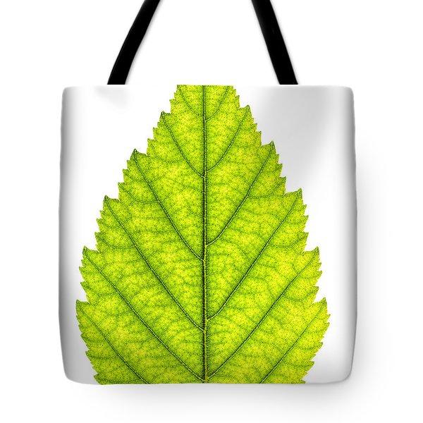 Green Tree Leaf Tote Bag by Elena Elisseeva