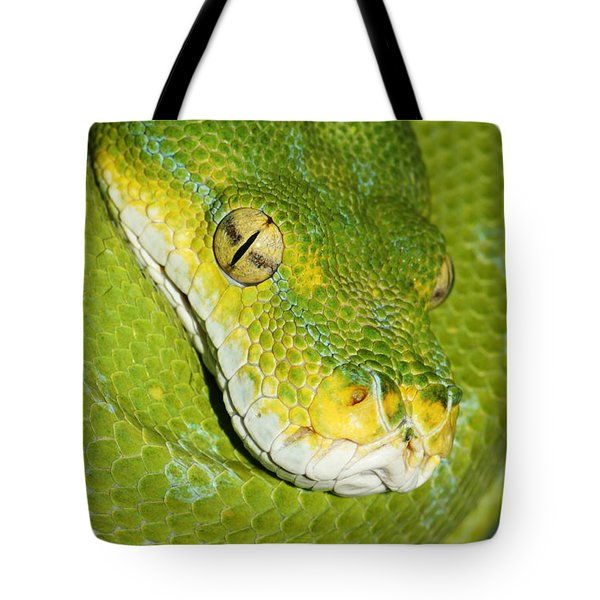 Tote Bag featuring the photograph Green Tree Python #2 by Judy Whitton