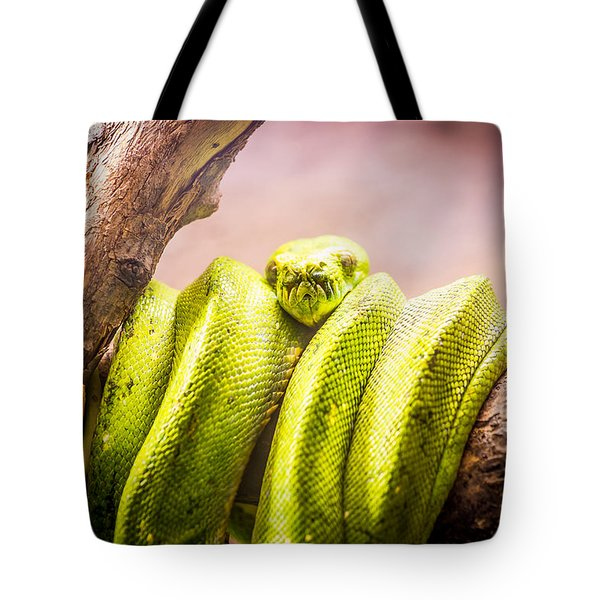 Green Tree Python Tote Bag by Pati Photography