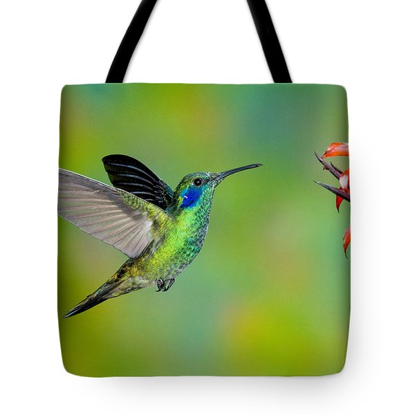 Green Violet-ear Hummingbird Tote Bag by Anthony Mercieca