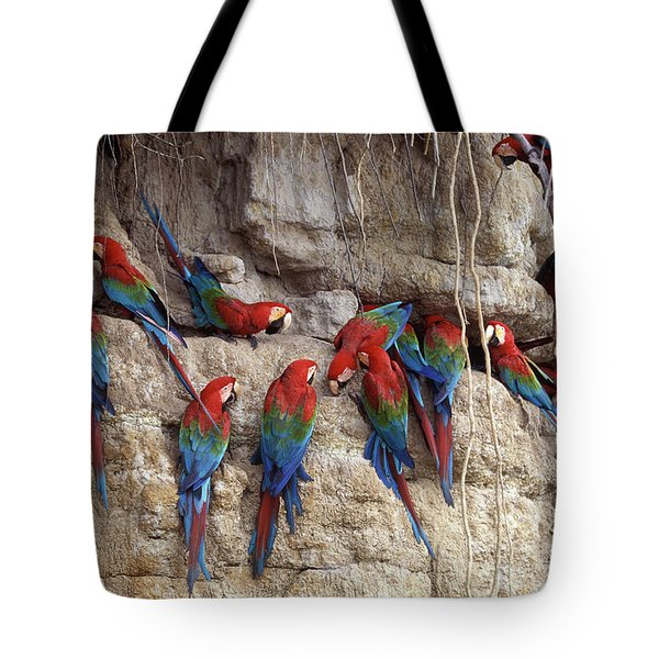 Green-winged Macaw Tote Bag