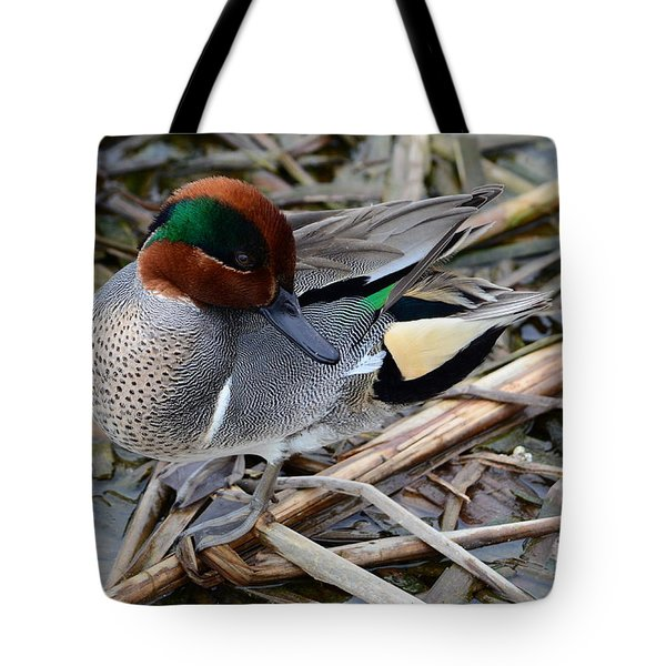 Tote Bag featuring the photograph Green-winged Teal by Debra Martz