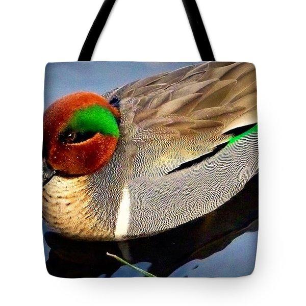 Green Winged Teal  Duck  Tote Bag by Susan Garren