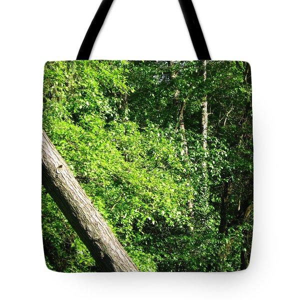 Greenbelt Fall Tote Bag
