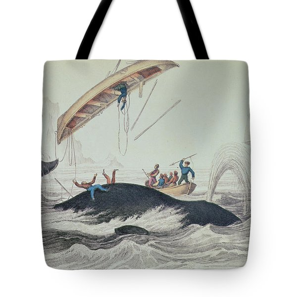 Greenland Whale Book Illustration Engraved By William Home Lizars  Tote Bag by James Stewart